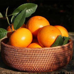 新鲜水果5斤、8斤、10斤  广西武鸣特甜沃柑胜比皇帝柑涌泉蜜桔茂谷柑礼盒装  包邮