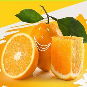 重庆奉节脐橙  现摘现发  新鲜水果  特产当季时令孕妇水果  非赣南秭归甜橙子