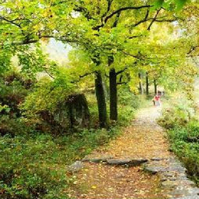 1680 引爆上海/南京/苏州避暑养生,哈尔滨田园牧歌双卧10日游 世外桃源般的田园生活体验