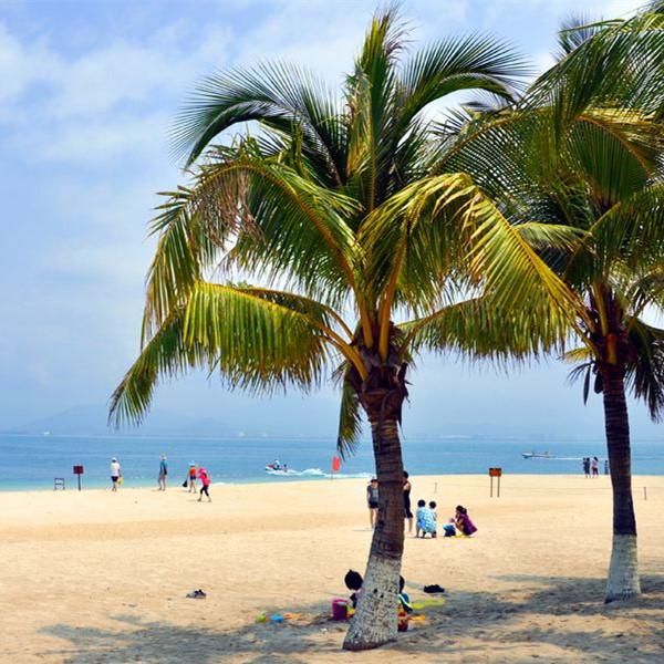 嗨玩海岛 围绕海岸,尽享悠然时光 三亚进出(五天四晚)