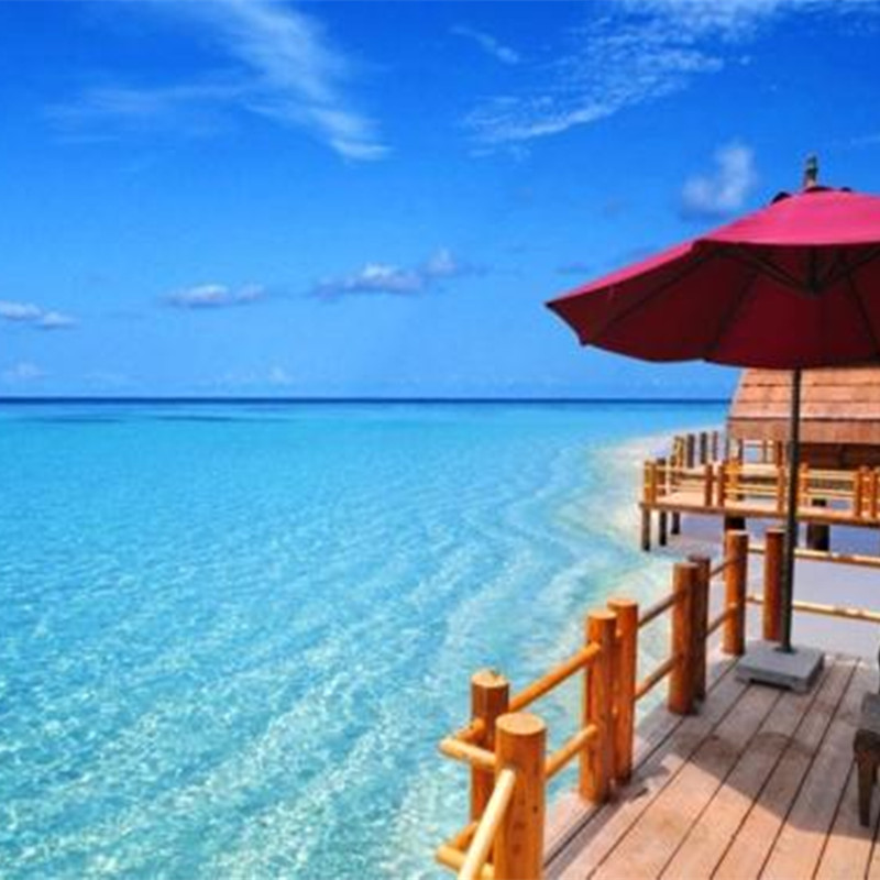 圣卢西亚护照-加勒比明珠,护照新贵。立法项目,安全可靠,护照在手,畅游全球!!